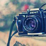 XII Concurso Fotografía Micológica