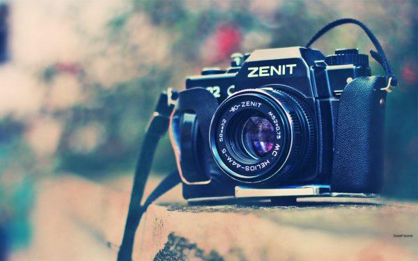XI Concurso Fotografía Micológica