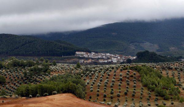 "XVII Jornadas Micológicas ""Villas de Siles"""